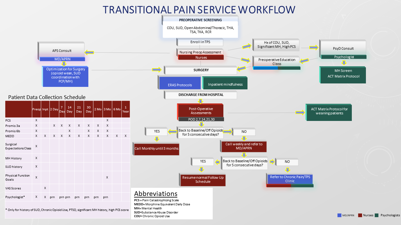 Transitional Pain Service Workflow